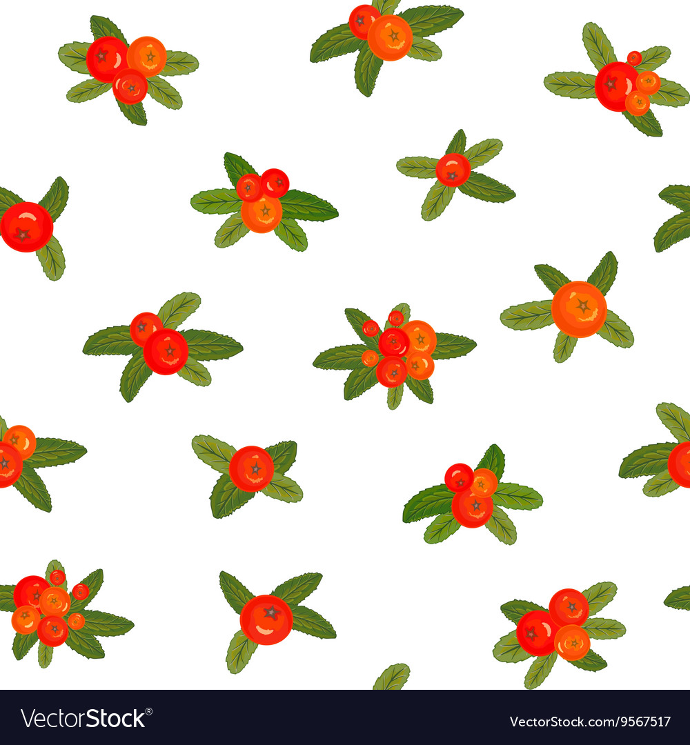 Red berries seamless pattern