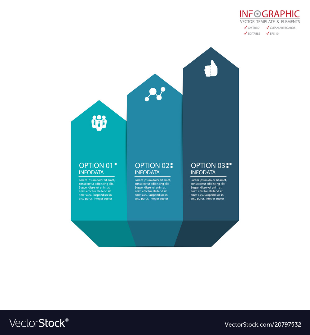 Abstract element infographics 3 option design for