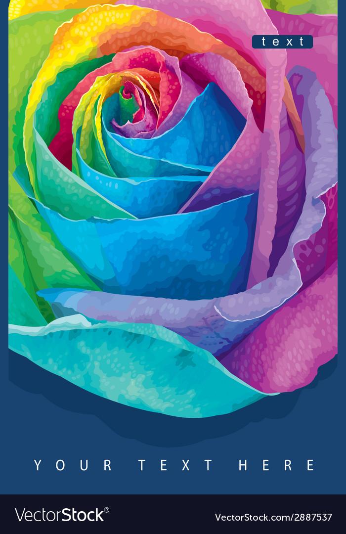 Raibow rose card 1 vector image