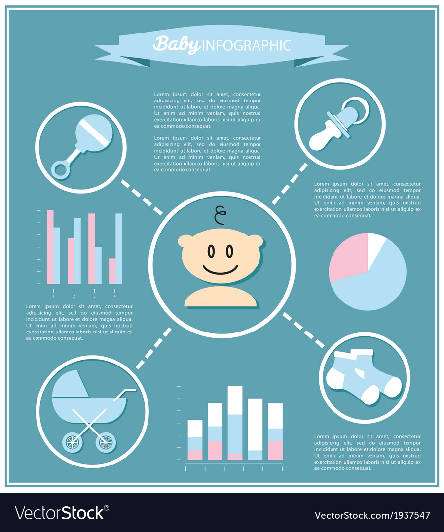 Detail info graphic with baby symbols vector image