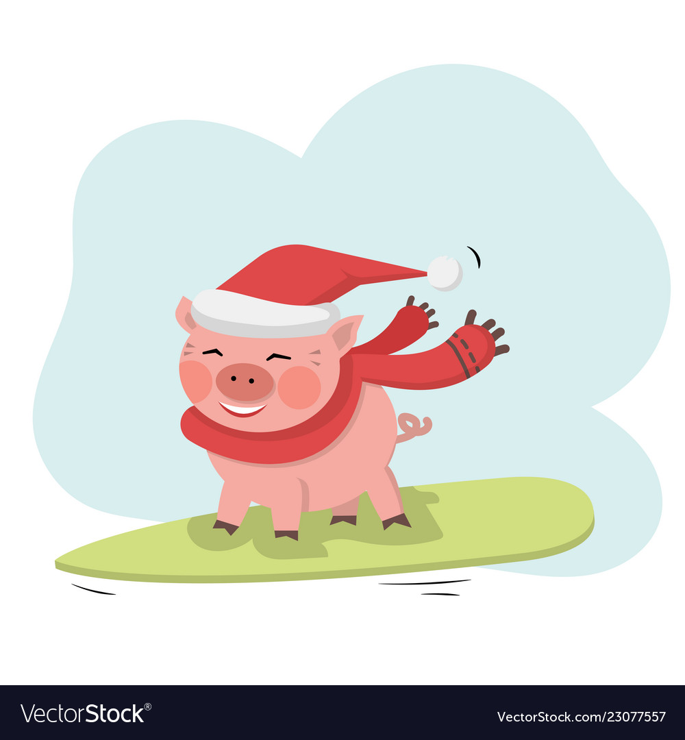 Pig ride on surfboard with santa hat and red scarf