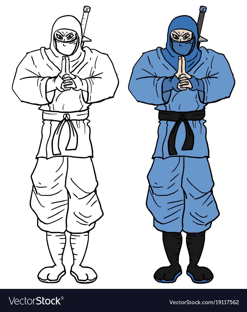 Color ninja