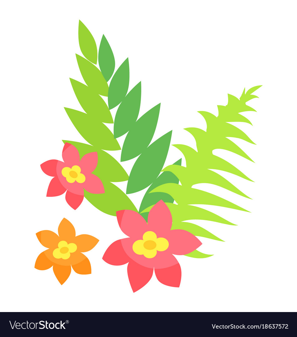 Colorful exotic green foliage and flowers vector image