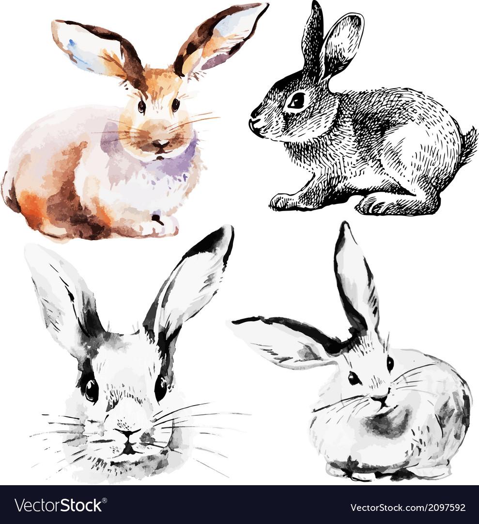 Set easter rabbits
