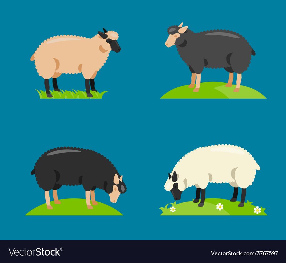 A cartoon sheep vector image