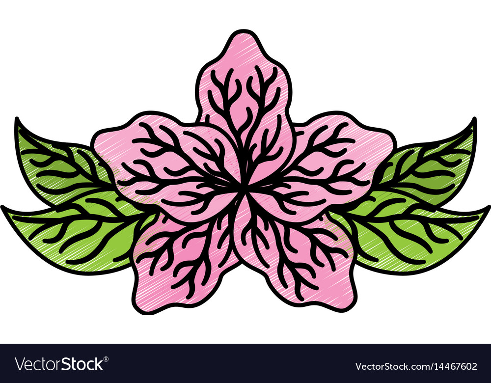 Lotus flower isolated icon