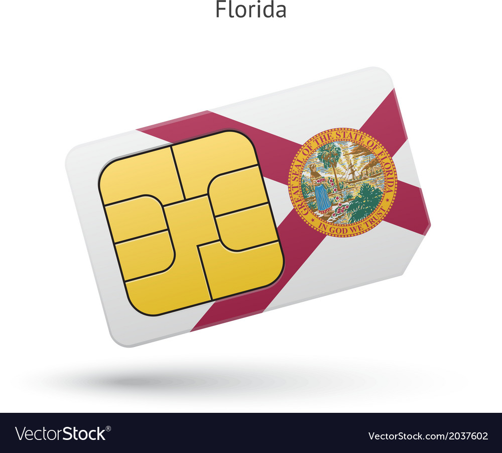 State of Florida phone sim card with flag vector image