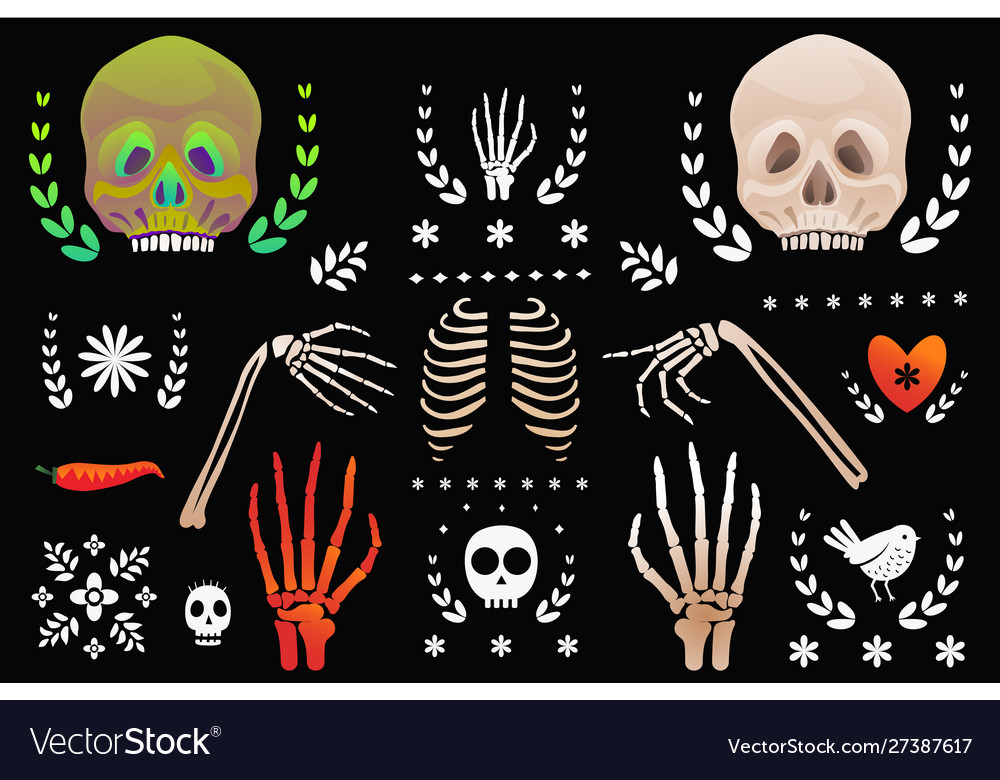 Skulls and skeleton body parts clip art objects