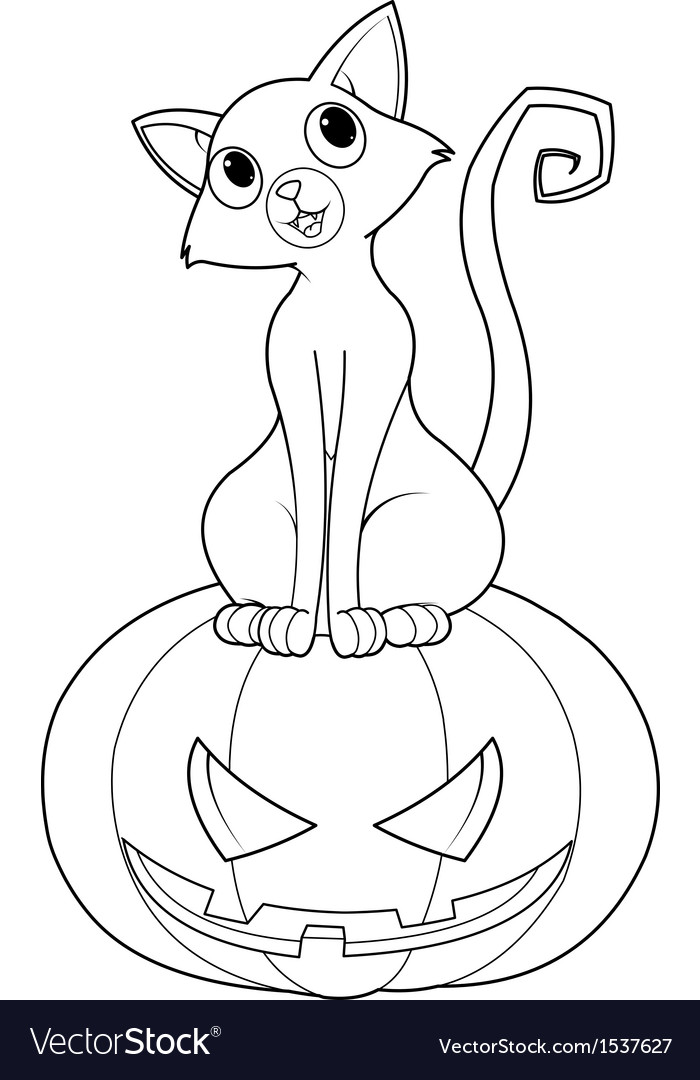 Halloween Cat on pumpkin coloring page vector image