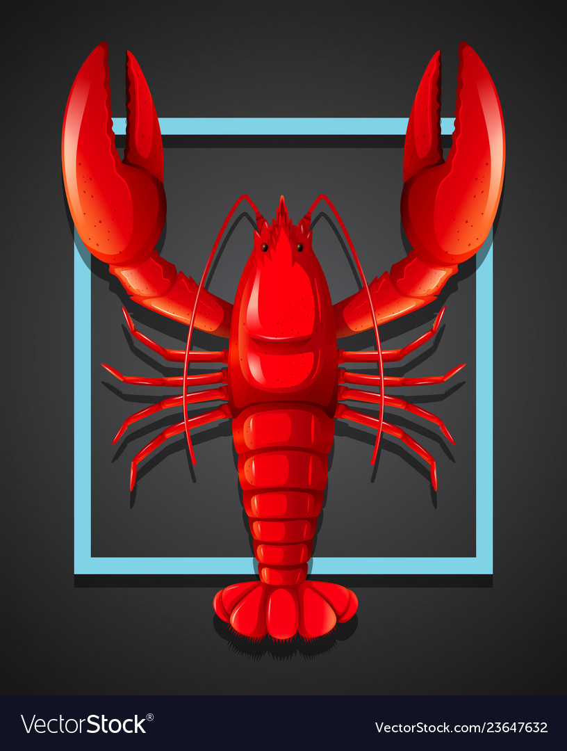 A red lobster on black template