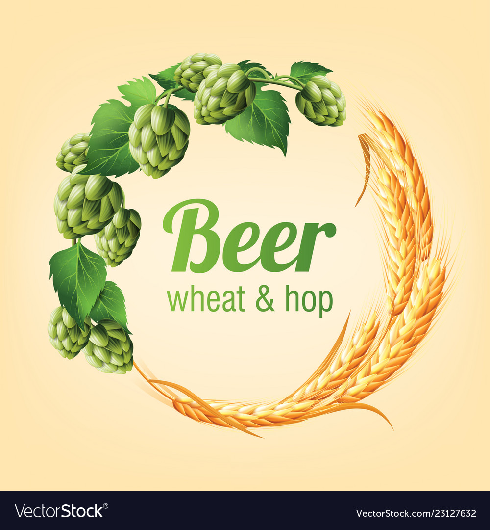 Wreath with hops and wheat floral composition
