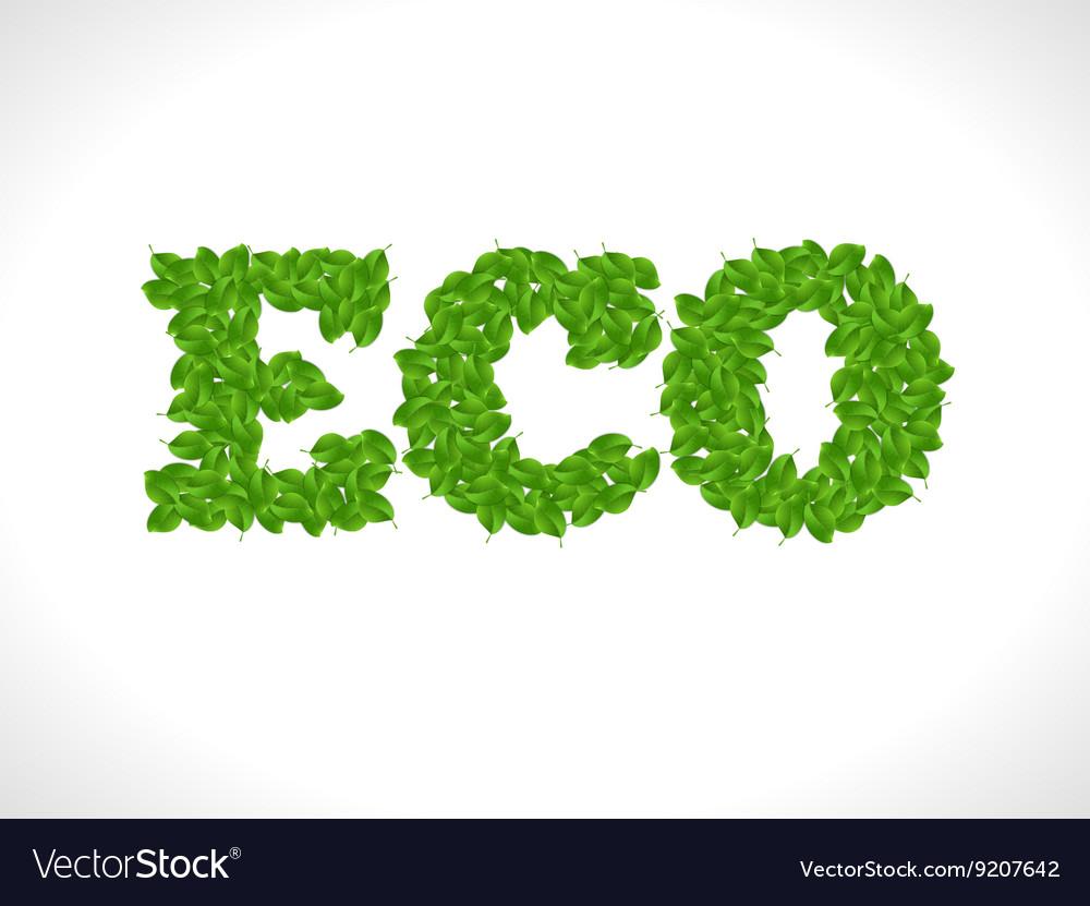 Eco friendly word FRESH made of green leafs