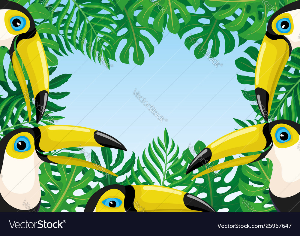 Frame toucan birds and tropical leaves