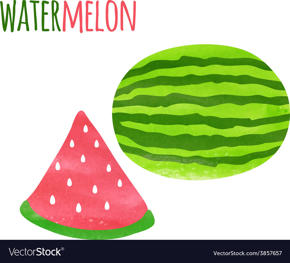 Abstract Colorful Watercolor Watermelon isolated