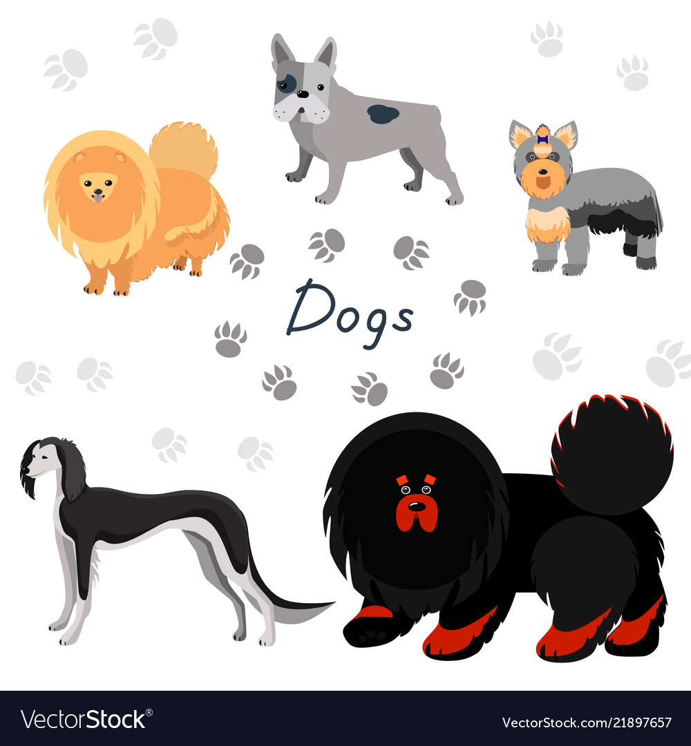 Dogs collection in flat style