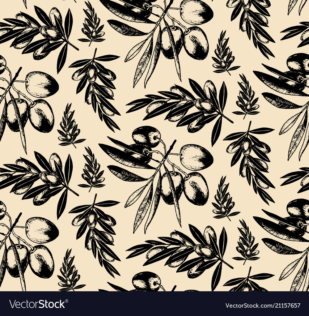 Seamless pattern of olive brancheshand drawn