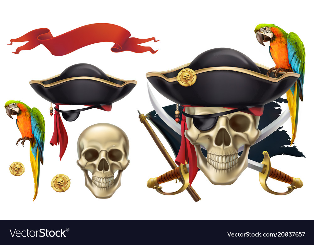 Skull and parrot pirate emblem 3d icon set