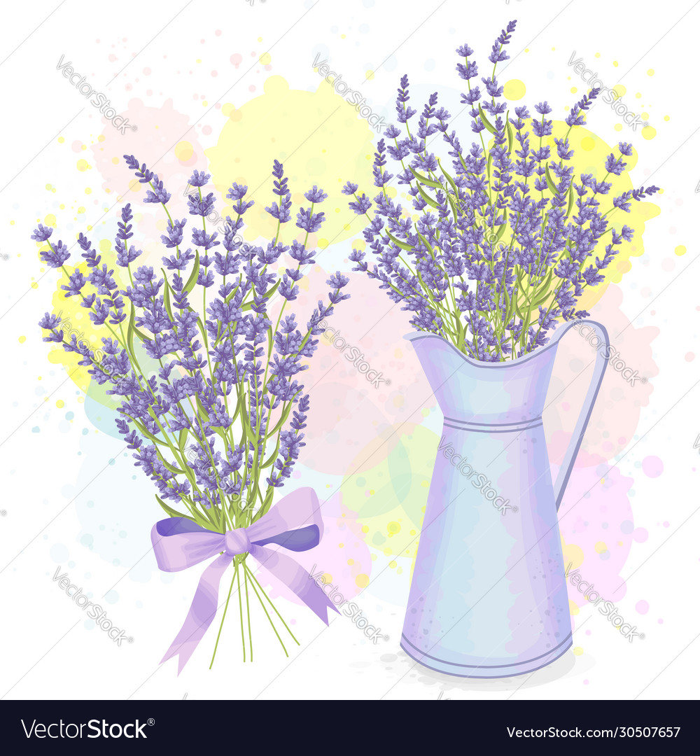Watercolor Lavender Bouquet And Pitcher Royalty Free Vector