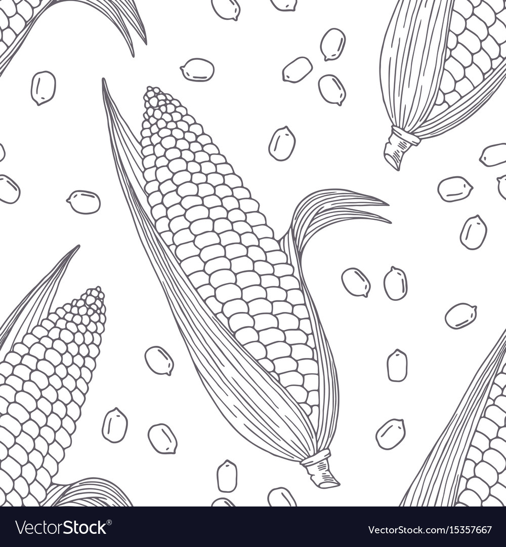 Hand drawn seamless pattern with corn