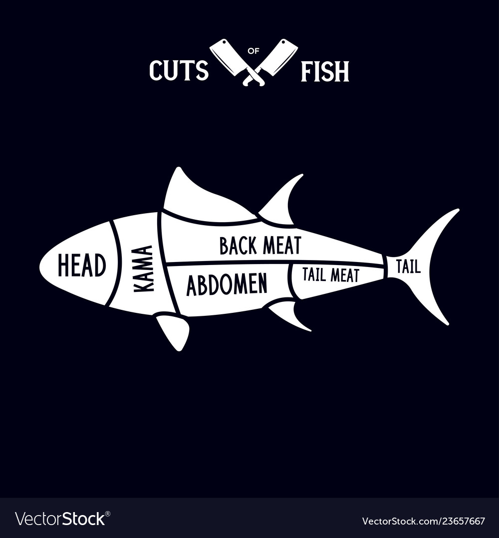 Meat cuts - fish diagrams for butcher shop