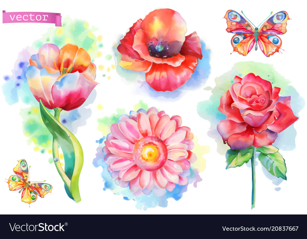 Spring flowers set watercolor
