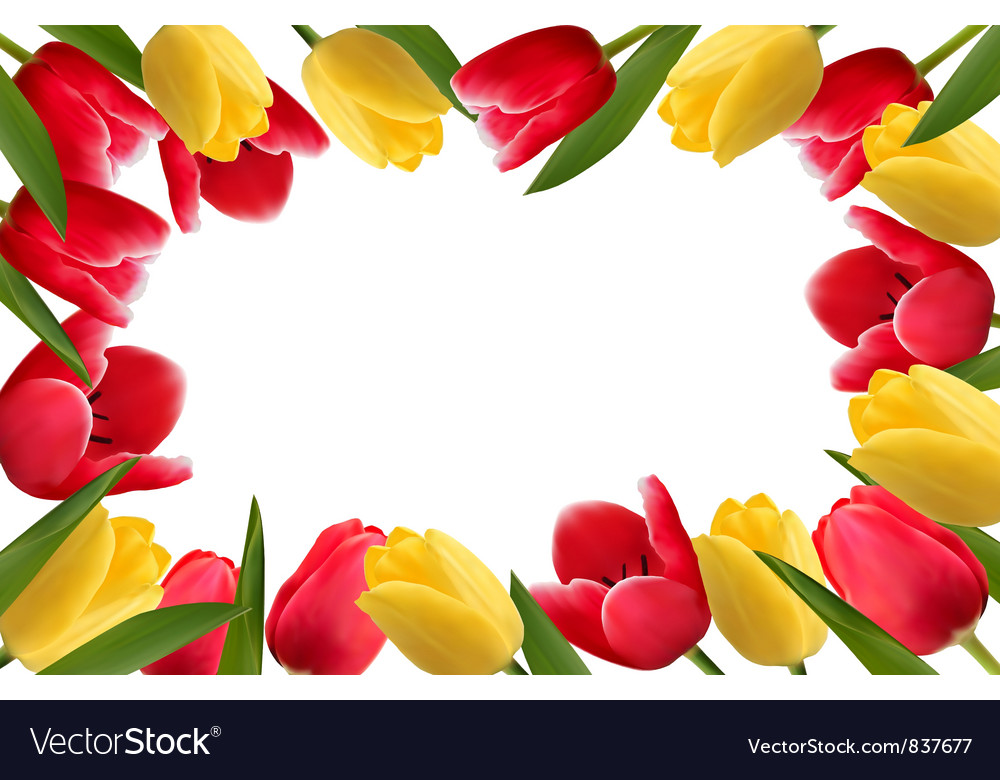 Color Spring Flower Frame Royalty Free Vector Image