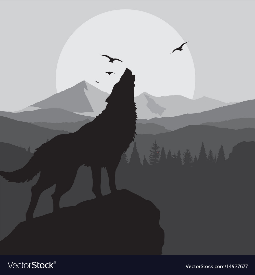 Wolf howling background in grey color vector image