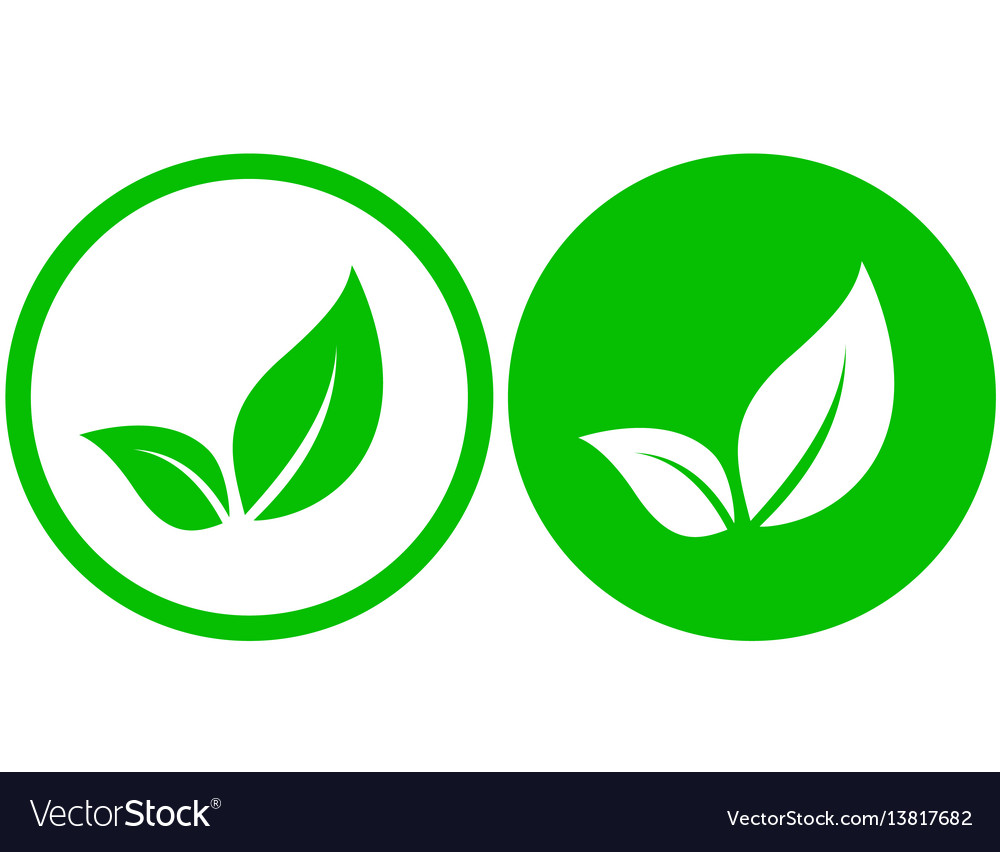 Round icon with leaf vector image