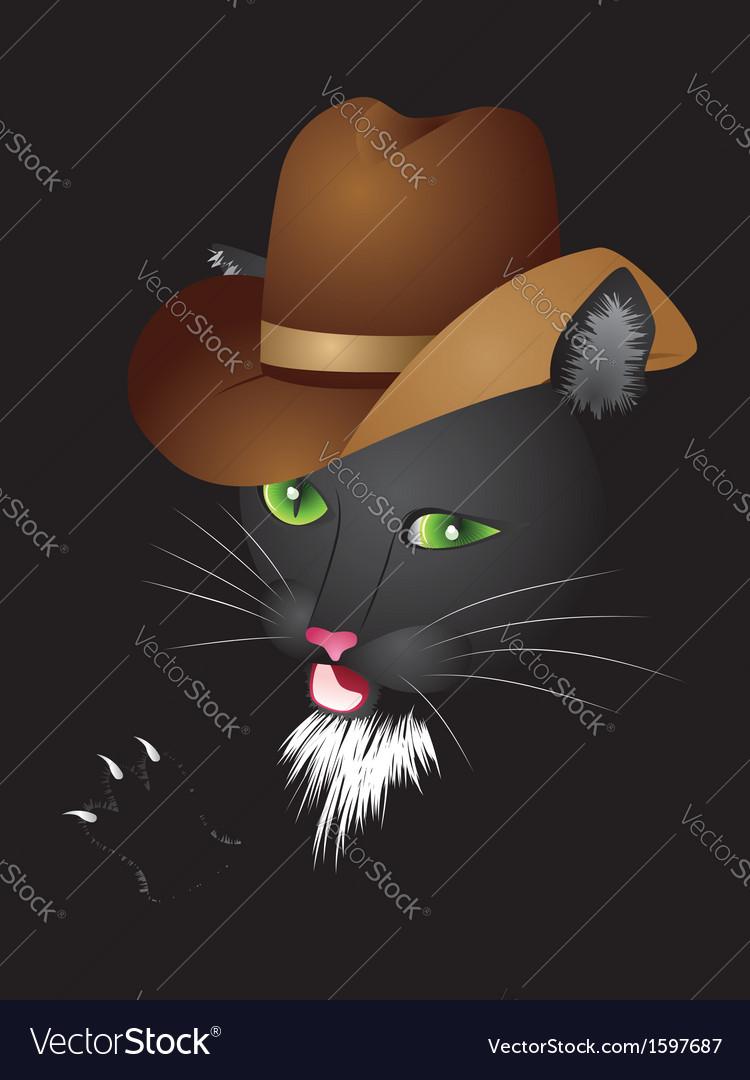 Black cat cowboy