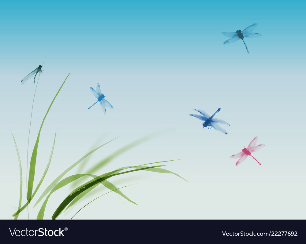 Dragonflies flying over the grass and blue summer
