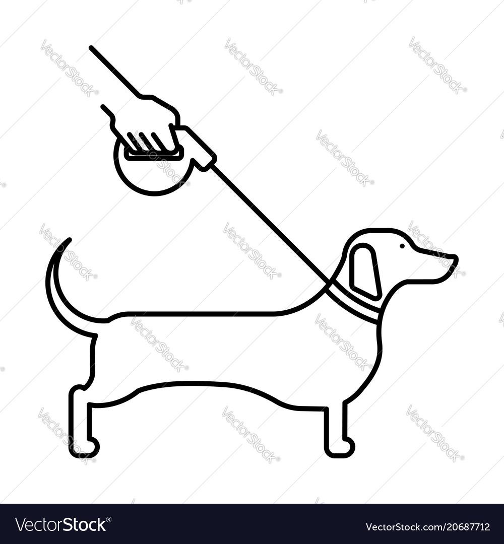 Line icon dog dachshund