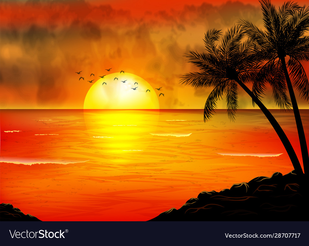 A tropical sunset with palm trees