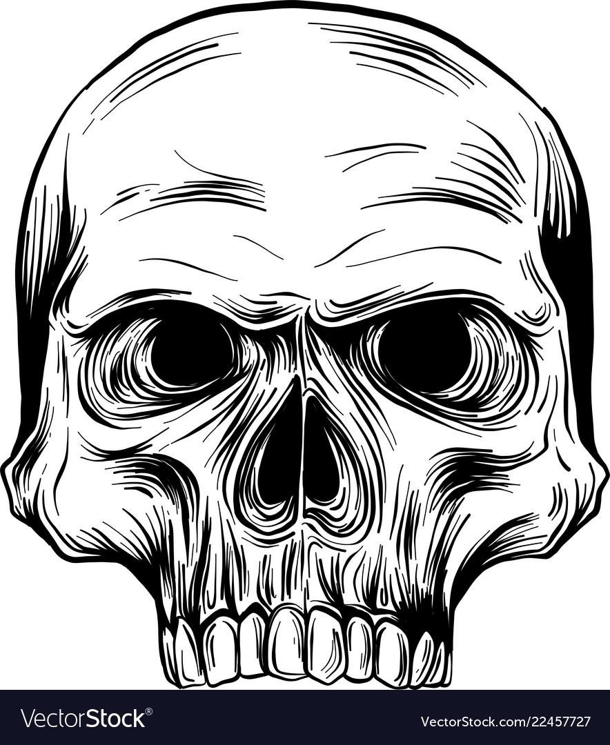 Black and white of human skull