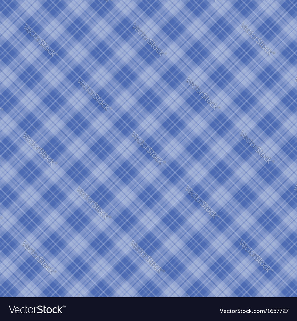 Tablecloth   Gingham Texture 2 Vector Image