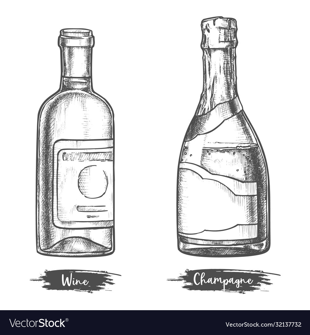 Alcohol drink bottles sketch wine and champagne