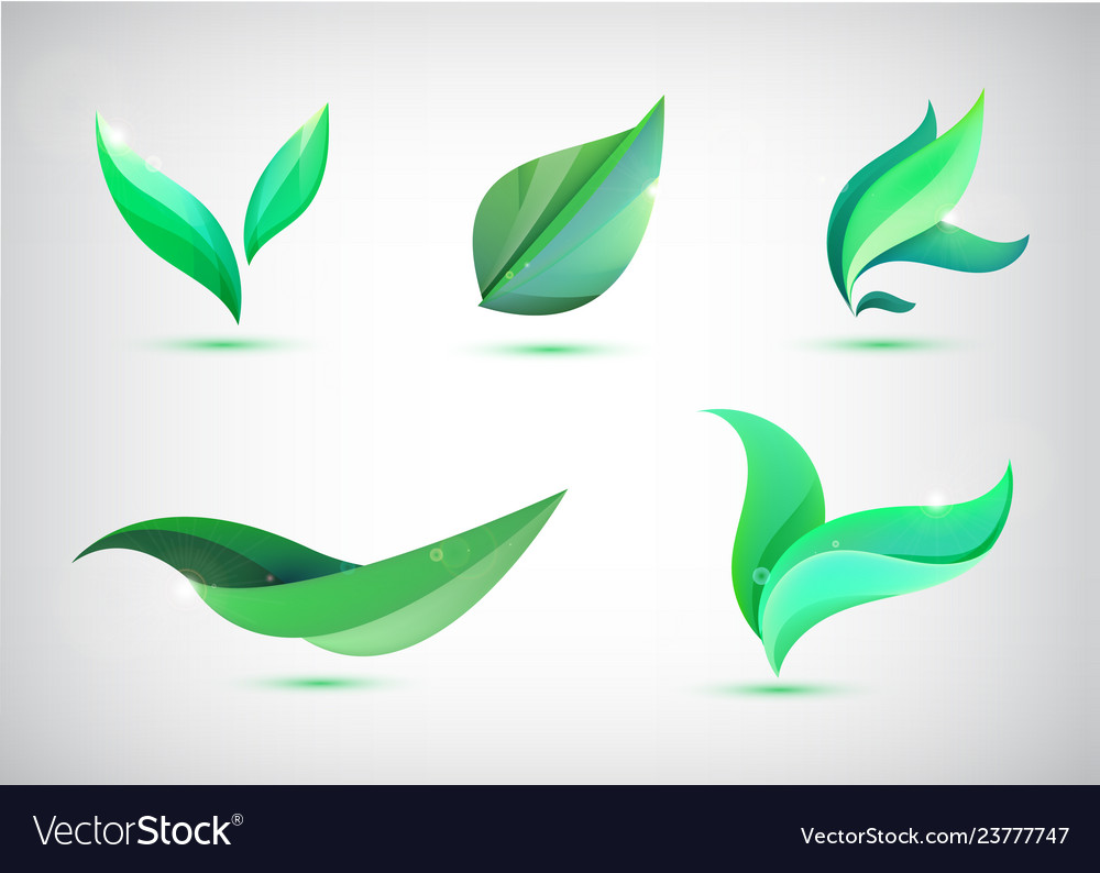 Set green leaves icons