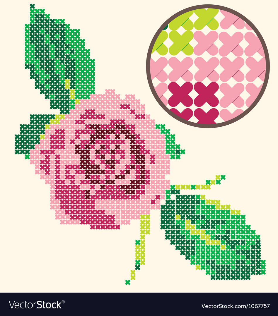 Rose Coarse Muslin vector image