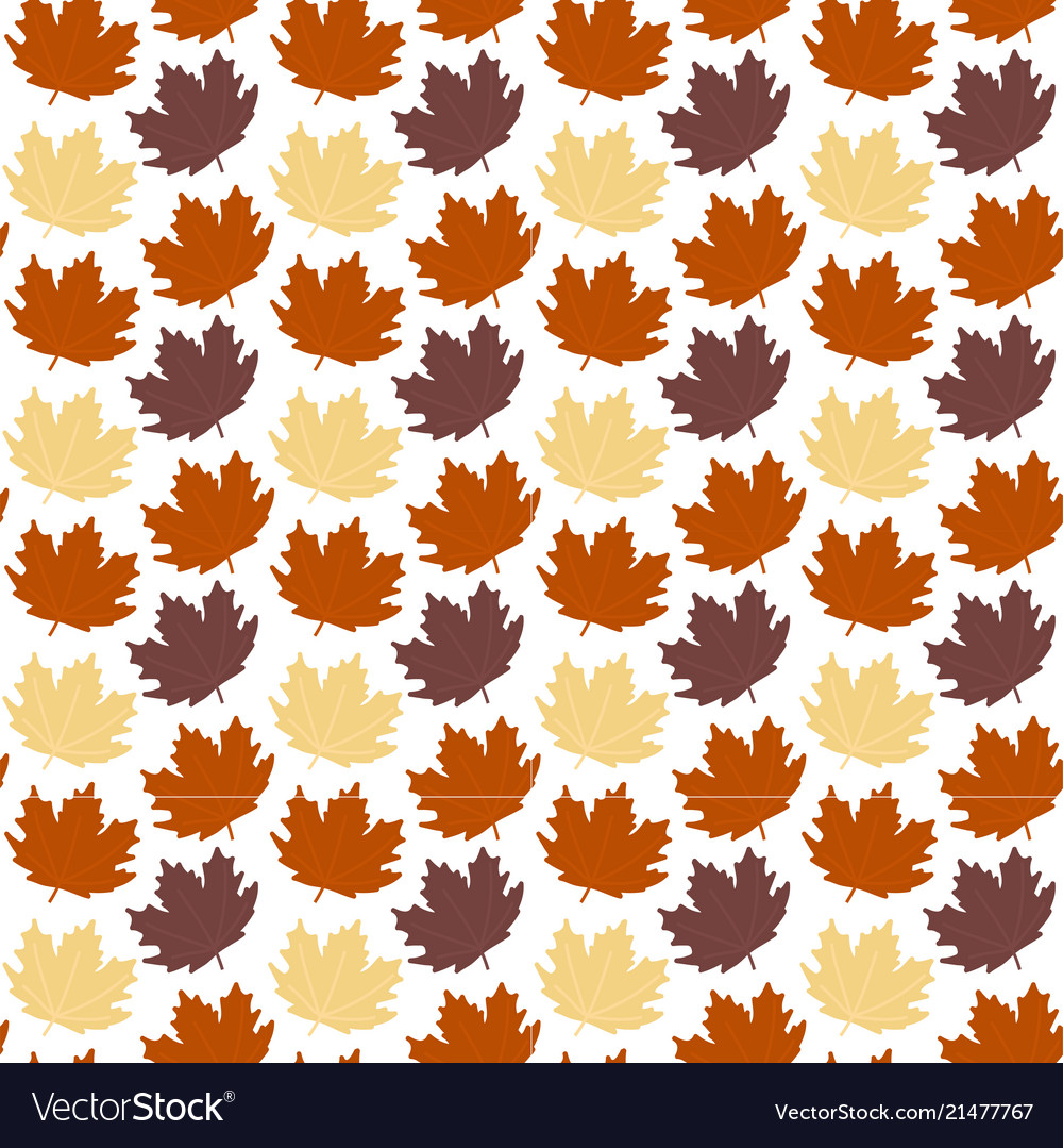 Abstract autumn maple leaves white background vect