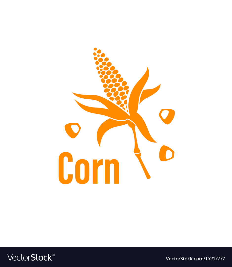 Corn vegetable icon