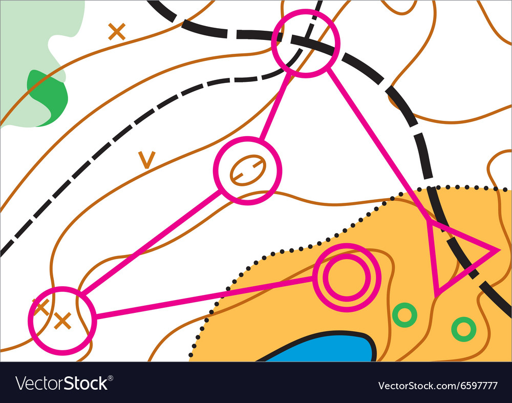 Simple topographic map vector image