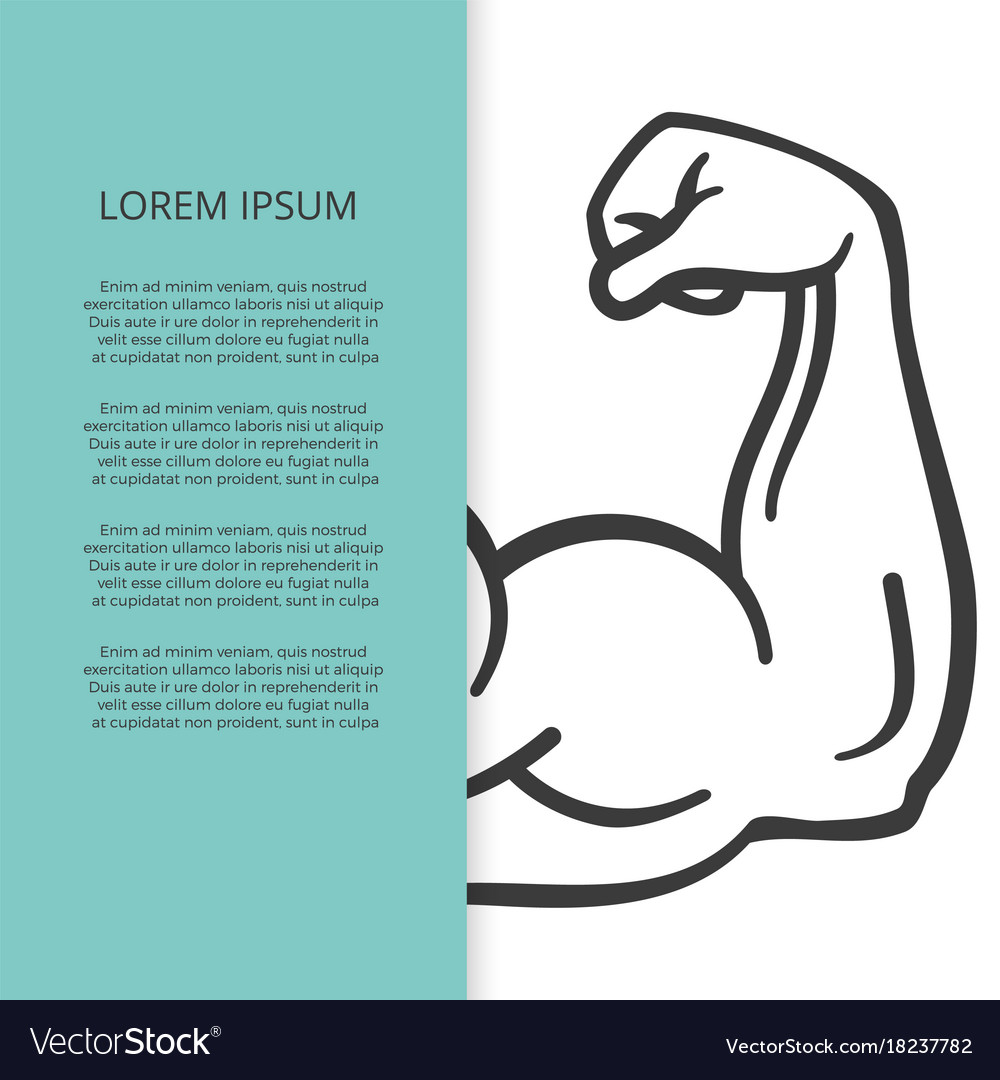 male muscle arm brochure or banner template vector image