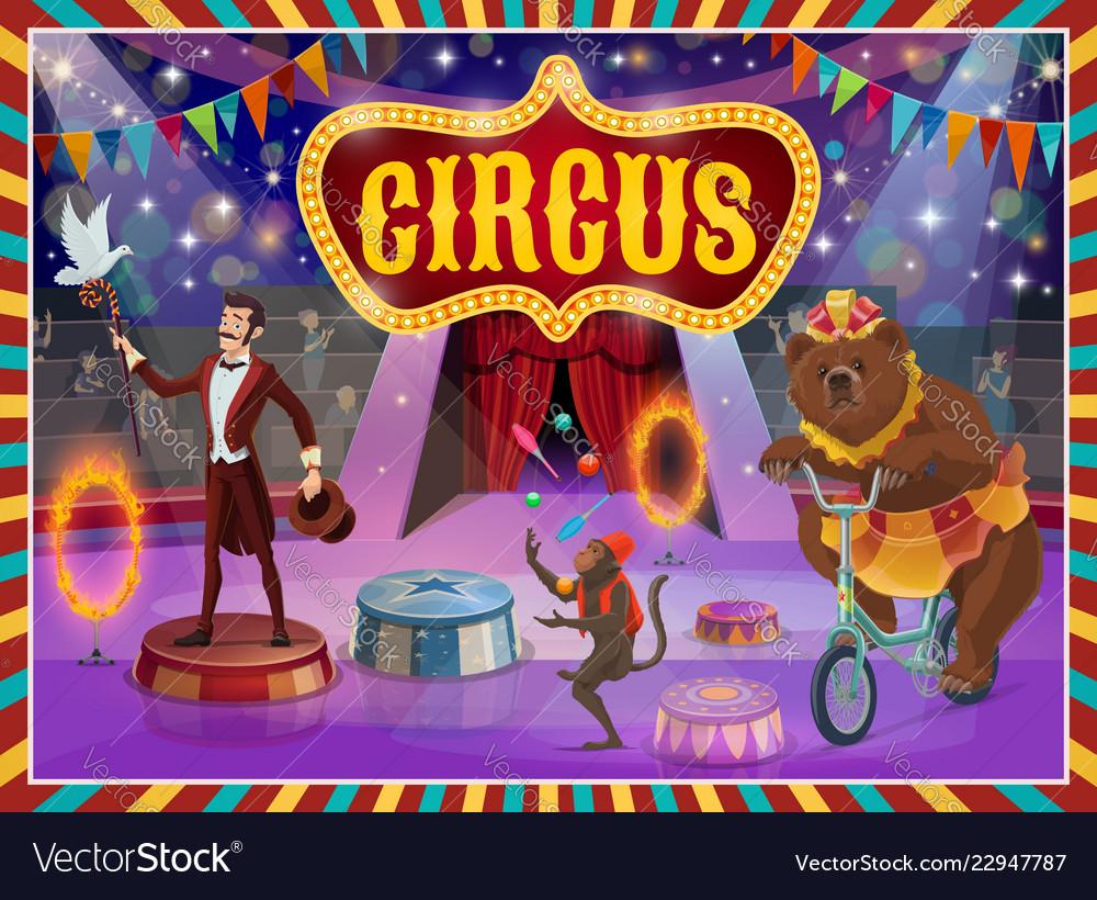 Big top circus show magician animals performance