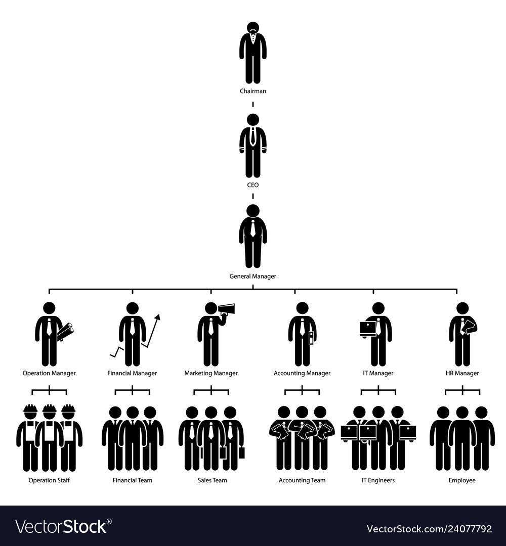 Organization chart tree company corporate