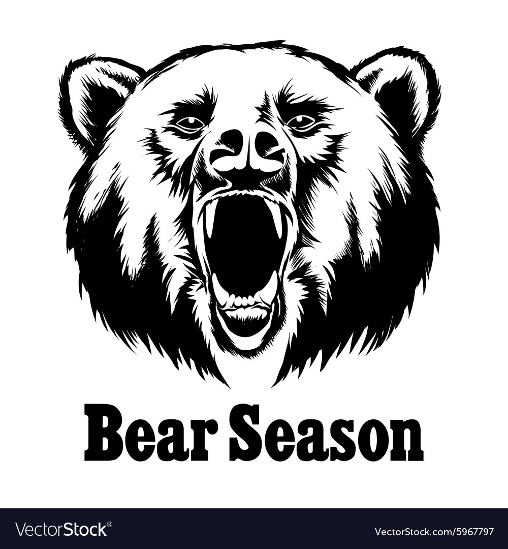 Hand drawn roaring bear T-shirt design vector image