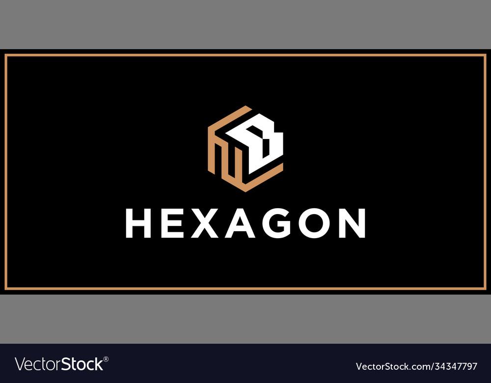Nb hexagon logo design inspiration