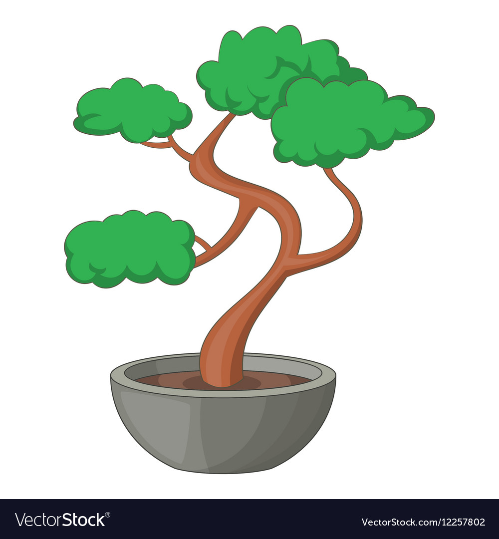 Bonsai tree icon cartoon style