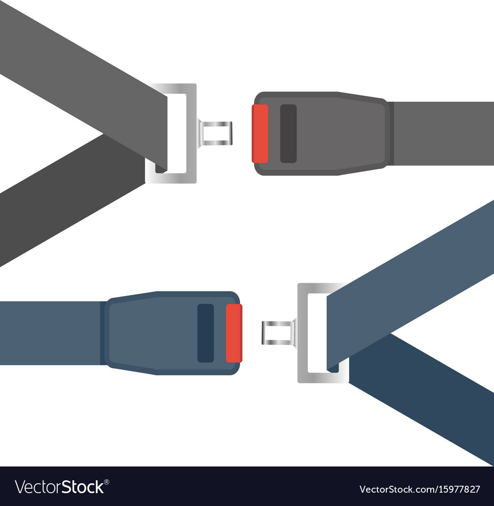Car seat belts ilustration isolated on a white vector image