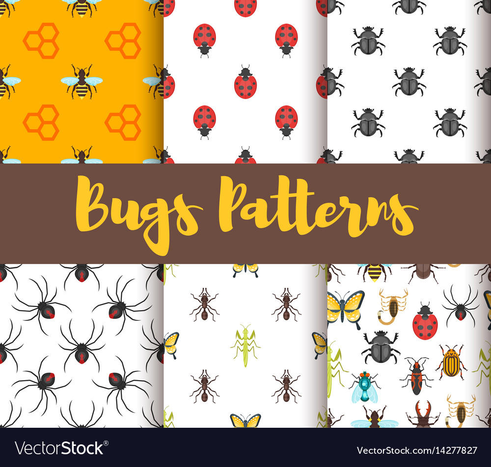 Flat style set of patterns with bug