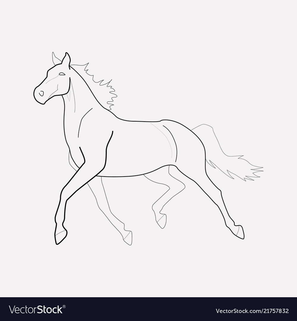 Horse icon line element of