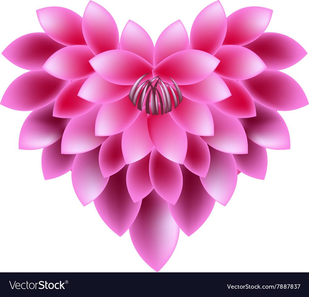 Pink dahlia flowers in a heart shape royalty free vector pink dahlia flowers in a heart shape vector image izmirmasajfo